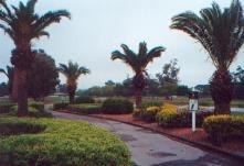 Belleview Biltmore Resort