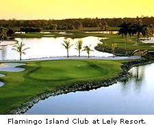 Flamingo Island Club