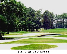 No. 7 at Saw Grass