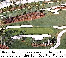 Stoneybrook Golf