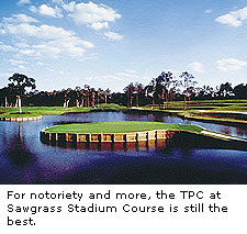 Stadium Course at the TPC at Sawgrass