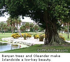 Banyan Trees on islandside