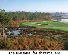 The Mustang, for shot-makers