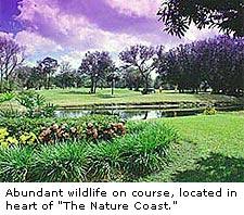 Plantation Inn Golf Course