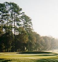 University of Florida Golf Course
