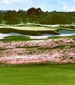 Panther Lake golf course
