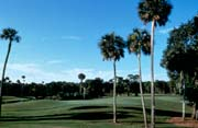Palm Coast Resort
